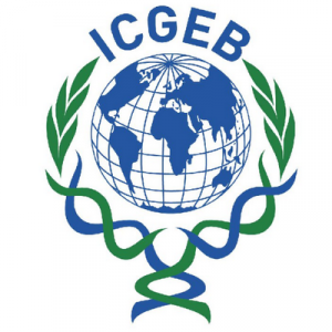 ICGEB Arturo Falaschi PhD and Postdoctoral Fellowships for Member Countries