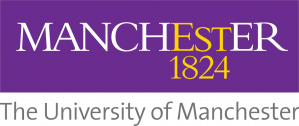 Doctoral Fellowship at the University of Manchester in England