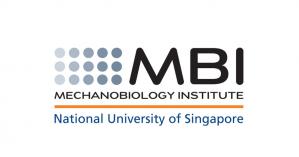 Mechanobiology Institute PhD Program 2019, National