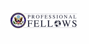 Professional Fellows Program in the USA