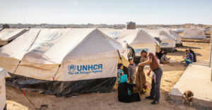 UNHCR is hiring Protection Associate in Sweden