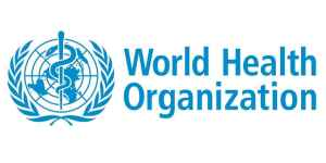 Technical Officer at WHO Office in Cairo, Egypt