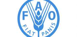 Paid Internship Opportunity at FAO Regional Office for the Near East and North Africa 2020