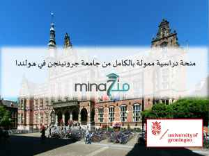 Fully Funded Study Scholarship in the Netherlands at University of Groningen: