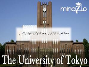 Japan scholarship at the University of Tokyo funded by the Mext program:
