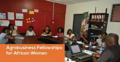 IGNITE 2019: Agrobusiness Fellowships for African Women