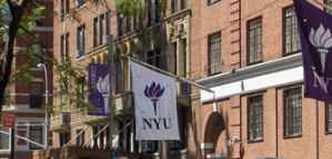 Funded Fellowships in Public Service at NYU Wagner in the USA