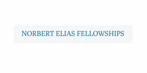 Norbert Elias Fellowships for Researchers from Africa