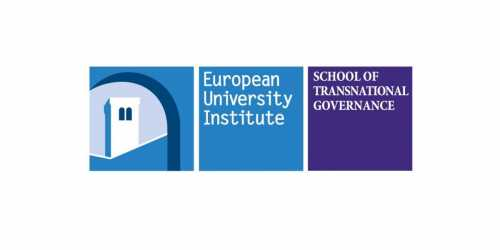 The School of Transnational Governance Policy Leader Fellowship