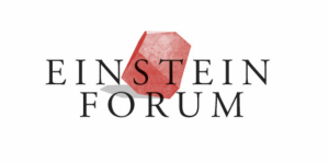 Einstein Fellowship by the Einstein Forum and the Daimler and Benz Foundation