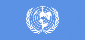 Job Opportunity in the US: Program Officer at the UN